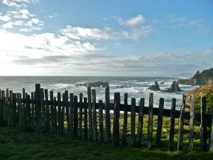 Coast at The Sea Ranch
