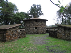 The Pig Palace