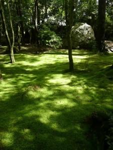 ryoanji zen garden kyoto moss @ journeylism.nl