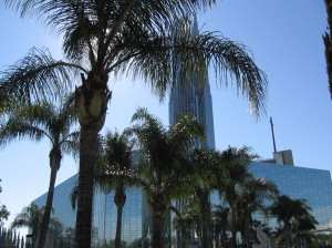 crystal cathedral @ journeylism.nl