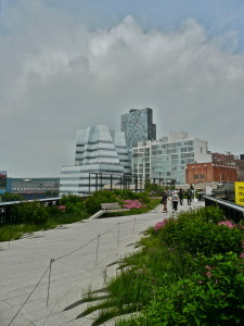 the high line new york city usa flowers and plants @ journeylism.nl