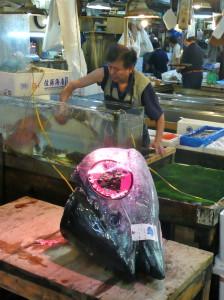 Tsukiji Fish Market Tokyo Japan @ journeylism.nl
