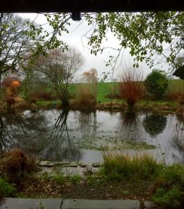 pond rhodds barn by www.journeylism.nl